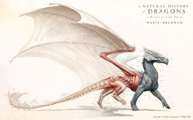 natural history of dragons wallpaper
