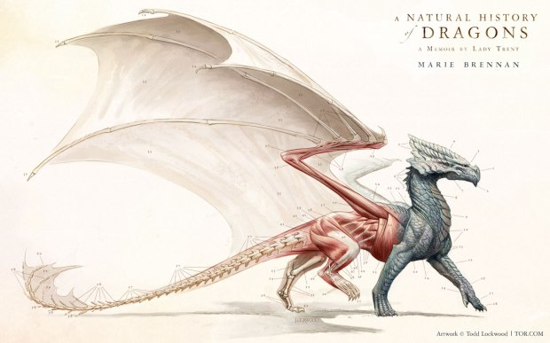natural history of dragons wallpaper