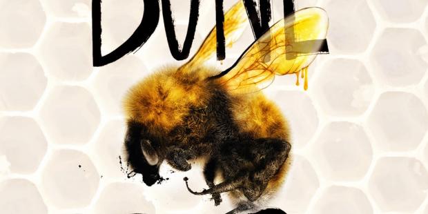 bone gap bee