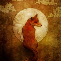 heavenly fox springshadow